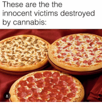 That awkward moment when you're so stoned you didn't notice the second 'THE' in the photo: These are the the  innocent victims destroyed  by cannabis That awkward moment when you're so stoned you didn't notice the second 'THE' in the photo