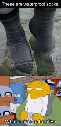 The future is now: These are waterproof socks.  ATERPRO  What a time to be alive The future is now
