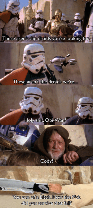 These Arent The Droids Youre Looking For: These aren't the droids you're looking for  These aren't the droids we're...  Holy shit, Obi-Wan?  Cody?  You son of a bitch. How the fck  did you survive that fall?