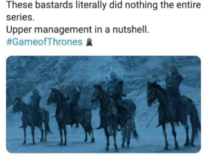 Gameofthrones, Did, and Management: These bastards literally did nothing the entire  series.  Upper management in a nutshell.
