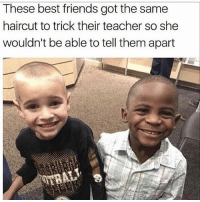 Friends, Funny, and Haircut: These best friends got the same  haircut to trick their teacher so she  wouldn't be able to tell them apart Do NOT follow @harder if you get offended easily 🤬😂