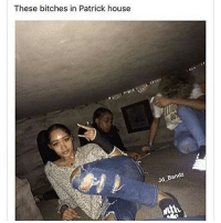 Who said Patrick aint got no hoes 😂😂 @staggering • ➫➫➫ Follow @Staggering for more funny posts daily!: These bitches in Patrick house  Bandz  Jd Who said Patrick aint got no hoes 😂😂 @staggering • ➫➫➫ Follow @Staggering for more funny posts daily!