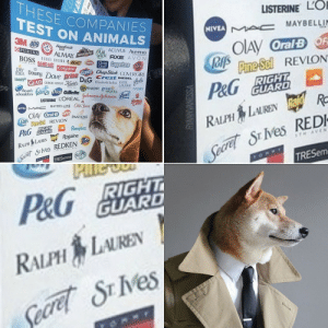 iams: THESE COMPANIES  TEST ON ANIMALS  LISTERINE LO  NIVEA A c MAYBELLIN  3M 409 Aquefresth  PURINA  OIAY OralBF  JOfs Prme Sol REVLON  ACUVUE Aveeno  ALMAY ARMORALWICK AXE AVON  BOSS  BROWNBIC meeaCoppertone Caress  BAND-AID Colgate  Clear  IDEA DownyDove prann CLOROX ChapStick COVERGIRL  IAMS GLAD GeG ARMAN  Kehe DeG Crest DIESEL  RIGHT  GUARD  Elizabeth Arden ESTEE  LAUDER  works  heads  shoukders  GARNIER green  P&G  Dial Gillette  IVORY  LISTERINE LOREAL ohwon-gohnion  MAYBELLINE Old Spice  MIVEA  OIAV OralB OFF  oA Pne-Sol REVLON PANTENE  P&G GUARD  RALPH LAURENRa R  Seare S Ves REDI  TRESEM  Pampers  RIGHT  Seare S ves REDKEN de  TRESemme SCOPE  RALPH LAUREN aid Rogaine  TH AVEN  THAVENGE NYC  P&G BIGHT  GUARD  RALPH LAUREN  Secret SE IVes  VSSENVANNA