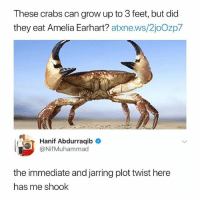 Ironic, Feet, and Amelia Earhart: These crabs can grow up to 3 feet, but did  they eat Amelia Earhart? atxne.ws/2joOzp7  Hanif Abdurraqib  @NifMuhammad  the immediate and jarring plot twist here  has me shook