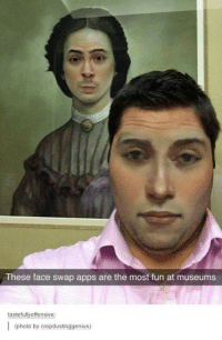 Face Swap: These face swap apps are the most fun at museums  tastefully offensive  (photo by cropdustinggenius)