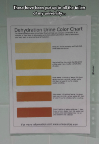 Doctor, Tumblr, and Blog: These have been put up in all the toilets  at my university.  Dehydration Urine Color Chart  The following Dehydration Urine Color Chart will heip you use your urine color as an  indicator of your level of dehydration and what actions you should take to help return  your body back to a normal level of hydration  Doing ok. You're probably well hydrated.  Drink water as normal.  You're just fine. You could stand to drink  a little water now, maybe a small glass  of water  Drink about 1/2 bottie of water (1/4 liter)  within the hour, or drink a whole bottle  (1/2 liter) of water if you're outside  and/or sweating  Drink about 1/2 bottle of water (1/4 liter)  right now, or drink a whole bottle (1/2 liter)  water if you're outside and/or sweating  Drink 2 bottles of water right now (1 liter).  If your urine is darker than this and/or red  or brown, then dehydration may not be  your problem. See a doctor  For more information visit www.urinecolors.com epicjohndoe:  Dehydration Levels To Keep In Mind