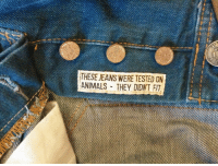 Animals, Jeans, and Fit: THESE JEANS WERE TESTED ON  ANIMALS- THEY DIDNT FIT My jeans were tested on animals.