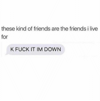 Friends, Fuck, and Live: these kind of friends are the friends i live  for  K FUCK IT IM DOWN