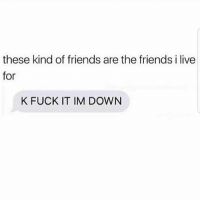 Friends, Memes, and Fuck: these kind of friends are the friends i live  for  K FUCK IT IM DOWN ✊🏽😂 MexicansProblemas
