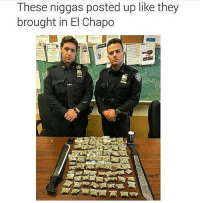 "El Chapo, Family, and Memes: These niggas posted up like they  brought in El Chapo ""Yeah Rodger we taught that family a good lesson about going a mile over the speed limit"""