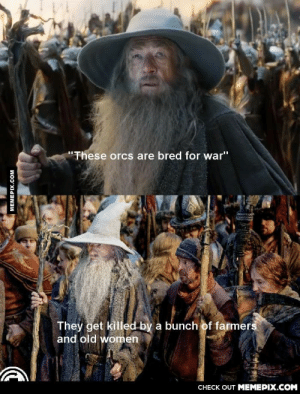 "Something that bothered me a lot after watching part 3 of the Hobbitomg-humor.tumblr.com: ""These orcs are bred for war""  They get killed by a bunch of farmers  and old women  CНЕCK OUT MЕМЕРIХ.COM  MEMEPIX.COM Something that bothered me a lot after watching part 3 of the Hobbitomg-humor.tumblr.com"