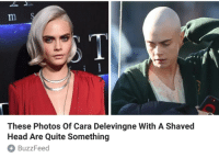"""Cara Delevingne, Head, and Tumblr: These Photos Of Cara Delevingne With A Shaved  Head Are Quite Something  BuzzFeed <p><a href=""""http://kernalmustache.tumblr.com/post/160033782339/setheverman"""" class=""""tumblr_blog"""">kernalmustache</a>:</p><blockquote><p><a class=""""tumblelog"""" href=""""https://tmblr.co/mBzwehFPuDrE1Hl_h5zPkgQ"""">@setheverman</a></p></blockquote> <p>i am suing</p>"""