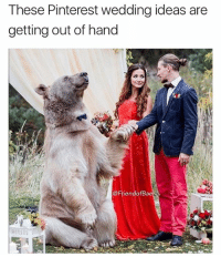 Oh Todd can we please have an actual bear as the ring bearer?? It would be so whimsical ;): These Pinterest wedding ideas are  getting out of hand  iendofBa Oh Todd can we please have an actual bear as the ring bearer?? It would be so whimsical ;)