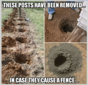 Been, Case, and They: THESE POSTS HAVE BEEN REMOVED  IN CASE THEY CAUSEA FENCE Small dump
