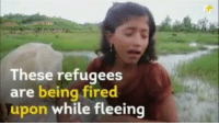 Children, Memes, and India: These refugees  are being fired  upon while fleeing SHARE THIS VIDEO! Absolutely horrible: STOP KILLING CHILDREN! Via @theinsidedrop rohingya killingpeopleinrohingya myanmar myanmarmuslim barmamuslims killingmuslims killinghumenbeing savepeople savemuslims urn indiangovt india uae saudiarabia stopkillingchildren