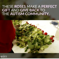 Need roses?  Consider ordering from this business?: THESE ROSES MAKE A PERFECT  GIFT AND GIVE BACK TO  THE AUTISM COMMUNITY  MIGHTY Need roses?  Consider ordering from this business?