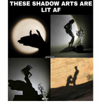 Af, Lit, and Memes: THESE SHADOW ARTS ARE  LIT AF  abebaba Realistic as well.. bcbaba