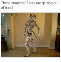 Memes, 🤖, and Reign: These snapchat filters are getting out  of hand  chaos reigns 😂😂😂 I'm 💀 -(cr @chaos.reigns_ - - - - - 420 memesdaily Relatable dank MarchMadness HoodJokes Hilarious Comedy HoodHumor ZeroChill Jokes Funny KanyeWest KimKardashian litasf KylieJenner JustinBieber Squad Crazy Omg Accurate Kardashians Epic bieber Weed TagSomeone hiphop trump rap drake