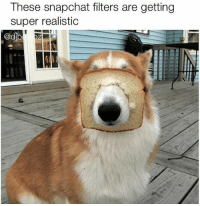 These snapchat filters are getting  super realistic  cho  DAA I mean what's next one that makes you look like a dog thot lol oh wait (@djbewbz)