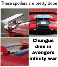 Dope, Avengers, and Infinity: These spoilers are pretty dope  Chungus  dies in  avengers  infinity war Me_irl