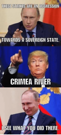 crimea river: THESE  STRIKES ARE AN AGGRESSION  TOWARDS A SOVEREIGN STATE.  CRIMEA RIVER  I SEE WHAT YOU DID THERE