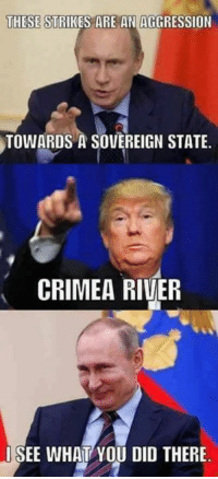 crimea river: THESE STRIKES ARE AN AGGRESSION  TOWARDS A SOVEREIGN STATE.  CRIMEA RIVER  SEE WHAT YOU DID THERE