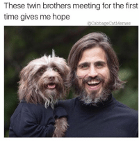 Dank, Twins, and Time: These twin brothers meeting for the first  time gives me hope  acabbageCatMemes So heartwarming ❤️