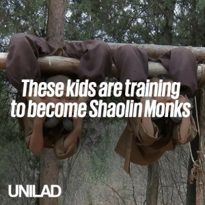 Dank, Kids, and Old: Thesekidsare training  tobecomeShaolin Monks  UNILAD These kids are Shaolin Monks in training, and they start at just three-years-old... 😲😱