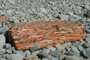 thesilencedmasses: sixpenceee:  Entire brick wall smoothed out by the ocean  That's some Dalí shit right there : thesilencedmasses: sixpenceee:  Entire brick wall smoothed out by the ocean  That's some Dalí shit right there