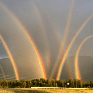 Tumblr, Wow, and Blog: thespectacularspider-girl: bluegoo2:  thespectacularspider-girl:   rigaya:  earthpictureshere:  Eight Rainbows! WOW Lehigh Valley, PA [960 x 960]  reblog for good luck   Leprechaun convention.   Leprecon  GODDAMNIT