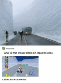 Japan, Snow, and Feet: thevporeon  What 60 feet of snow cleared in Japan looks like.  makes more sense now