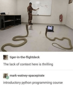 They're learning the Pythongorean theorem by EvqnAsht MORE MEMES: They're learning the Pythongorean theorem by EvqnAsht MORE MEMES