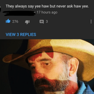 Yee, Never, and Ask: They always say yee haw but never ask haw yee  17 hours ago  VIEW 3 REPLIES I'm just a country boi