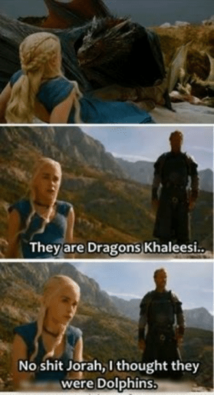 #GameOfThrone Ser Jorah They Are Dolphins, Khaleesi Meme | Game Of Thrones Memes and Quotes: They are Dragons Khaleesi.  No shit Jorah, 1 thought they  were Dolphins #GameOfThrone Ser Jorah They Are Dolphins, Khaleesi Meme | Game Of Thrones Memes and Quotes