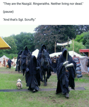 """Sgt: """"They are the Nazgûl. Ringwraiths. Neither living nor dead.""""  (pause)  """"And that's Sgt. Scruffy."""""""