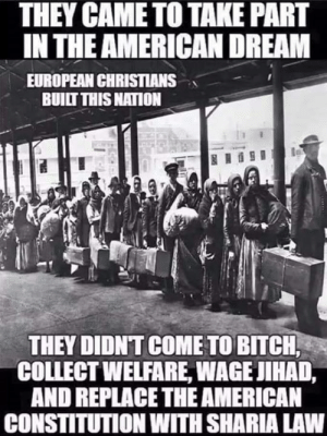 ~Hera~: THEY CAME TO TAKE PART  IN THE AMERICAN DREAM  EUROPEAN CHRISTIANS  BUILT THIS NATION  THEY DIDNT COME TO BITCH  COLLECT WELFARE, WAGE JIHAD,  AND REPLACETHE AMERICAN  CONSTITUTION WITH SHARIA LAW ~Hera~