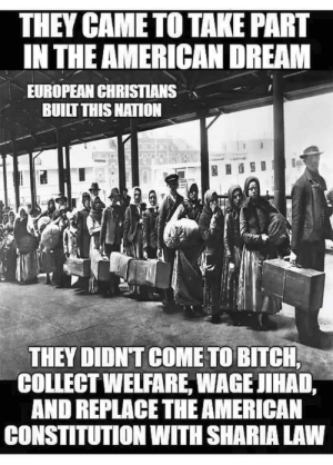 Bitch, American, and Constitution: THEY CAME TO TAKE PART  IN THE AMERICAN DREAM  EUROPEAN CHRISTIANS  BUILT THIS NATON  THEY DIDN'T COME TO BITCH,  COLLECT WELFARE, WAGE JIHAD,  AND REPLACE THE AMERICAN  CONSTITUTION WITH SHARIA LAW European Christians Built this Nation!