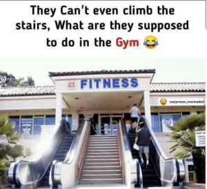 Me_irl: They Can't even climb the  stairs, What are they supposed  to do in the Gym e  24 FITNESS  crazynesss_overloaded  PUINT L Me_irl