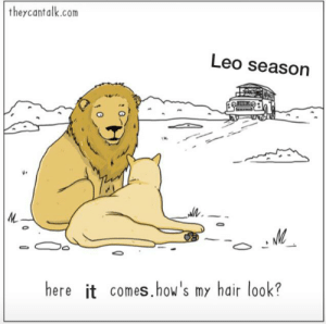 It's coming up!: they cantalk.com  Leo season  M  here it comes.how's my hair look? It's coming up!