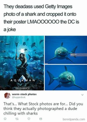 Dude, True, and Shark: They deadass used Getty Images  photo of a shark and cropped it onto  their poster LMAOOOoOo the DC is  a joke  ONLY-IN THEATERS  DECEMBER 21  worm-stock photos  @hupperdook  That's... What Stock photos are for... Did you  think they actually photographed a dude  chlling with sharks  ta  boredpanda.com Both points are true