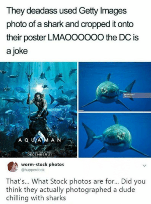 Dude, Shark, and Getty Images: They deadass used Getty Images  photo of a shark and cropped it onto  their poster LMAOOOOO0 the DC is  a joke  ONLY IN THEATER  DECEMBER 21  worm-stock photos  @hupperdook  That's... What Stock photos are for... Did you  think they actually photographed a dude  chilling with sharks Well..