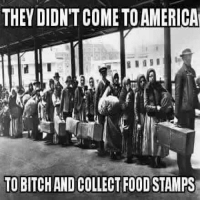 Come To America: THEY DIDNT COME TO AMERICA  TO BITCHAND COLLECT FOOD STAMPS