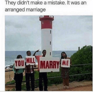 Didn't make a mistake by tristan10000 FOLLOW HERE 4 MORE MEMES.: They didn't make a mistake. It was an  arranged marriage  WILL  YOU  MARRY ME Didn't make a mistake by tristan10000 FOLLOW HERE 4 MORE MEMES.
