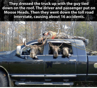 <p>When Grown Men Get Bored.</p>: They dressed the truck up with the guy tied  down on the roof. The driver and passenger put on  Moose Heads. Then they went down the toll road  interstate, causing about 16 accidents. <p>When Grown Men Get Bored.</p>