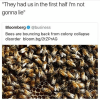 "Funny, Squad, and Twitter: They had us in the first half I'm not  gonna lie""  Bloomberg @business  Bees are bouncing back from colony collapse  disorder bloom.bg/2tZPrAG We did it, squad. If you got a twitter put a 🐝 in your display name. It's why my twitter account is @SavinTheBees We out here"