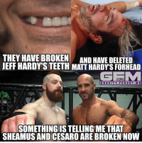 Meme, Memes, and Wrestling: THEY HAVE BROKEN  AND HAVE DELETED  JEFF HARDY STEETH MATTHARDYSFORHEAD  GEMM  GRAVITY FOR GO T. M E  SOMETHING ISTELLINGIME THAT  SHEAMUS AND CESARO ARE BROKEN NOW cesaro sheamus brokenhardys delete wrestling prowrestling professionalwrestling meme wrestlingmemes wwememes wwe nxt raw mondaynightraw sdlive smackdownlive tna impactwrestling totalnonstopaction impactonpop boundforglory bfg xdivision njpw newjapanprowrestling roh ringofhonor luchaunderground pwg