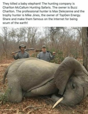 These assholes: They killed a baby elephant! The hunting company is  Charlton McCallum Hunting Safaris. The owner is Buzz  Charlton. The professional hunter is Max Delezenne and the  trophy hunter is Mike Jines, the owner of TopGen Energy  Share and make them famous on the Internet for being  scum of the earth! These assholes