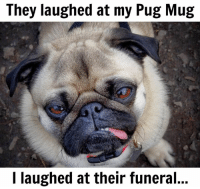 They laughed at my Pug Mug  I laughed at their funeral Now they sleep with the fishes...😂😂😂