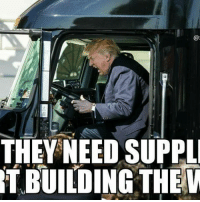 Memes, 🤖, and Americans: THEY NEED SUPPL  T BUILDING THE BuildTheWall . . . . 🇺🇸ALL WATERMARKED MEMES ARE WRITTEN BY MILLENNIAL REPUBLICANS BUT WE DO NOT OWN THE PHOTOS WITHIN THE MEMES🇺🇸 MAGA millennialrepublicans donaldtrump buildthewall mypresident merica ronaldreagan fakenews makeamericagreatagain liberallogic americafirst trumptrain triggered presidenttrump snowflakes PARTNERS🇺🇸 @conservative_comedy_ @always.right @ny_conservative1776 @rebelrepublican @conservative.american
