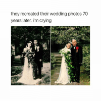 Crying, Memes, and Wedding: they recreated their wedding photos 70  years later. i'm crying They are so adorable 😍😍😍